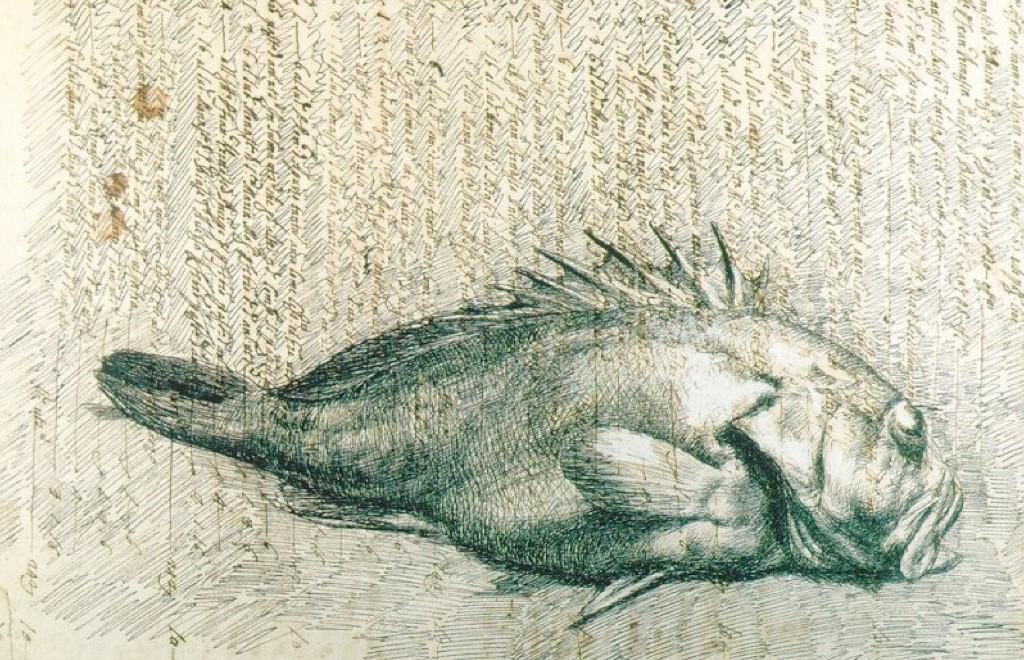 Scorfano - Gemito small