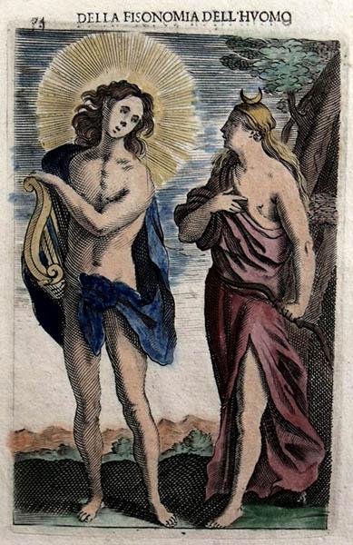Giambattista della Porta, La bellezza di Venere (in Della Fisonomia dell'huomo).