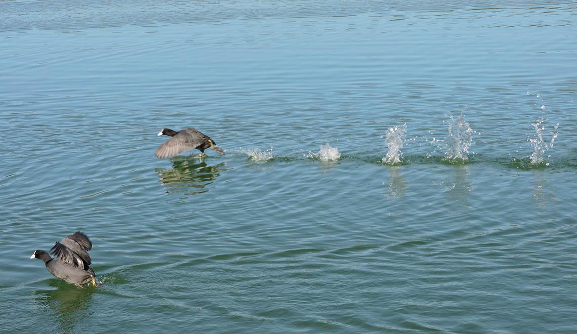 Il lago di Follicola