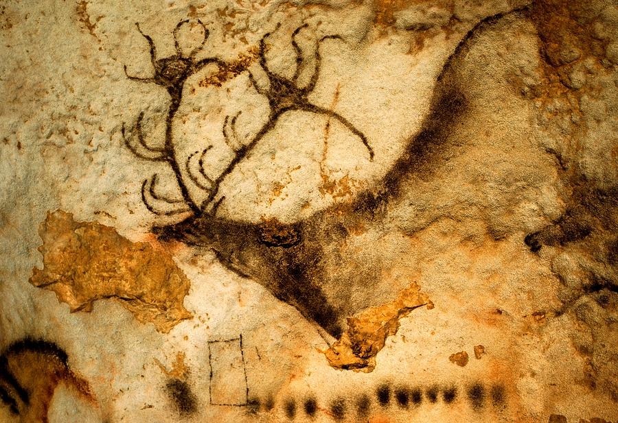 Rappresentazione rupestre di cervide del Paleolitico (grotte di Lascaux, Francia).