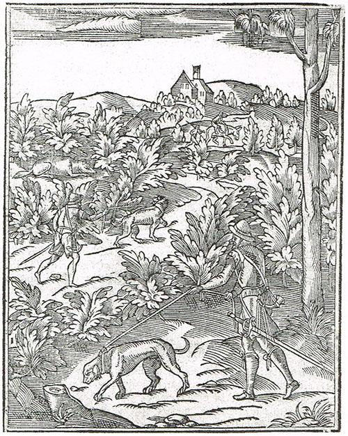 Immagine dal testo di Jean de Clamorgan, La chasse du loup, 1588