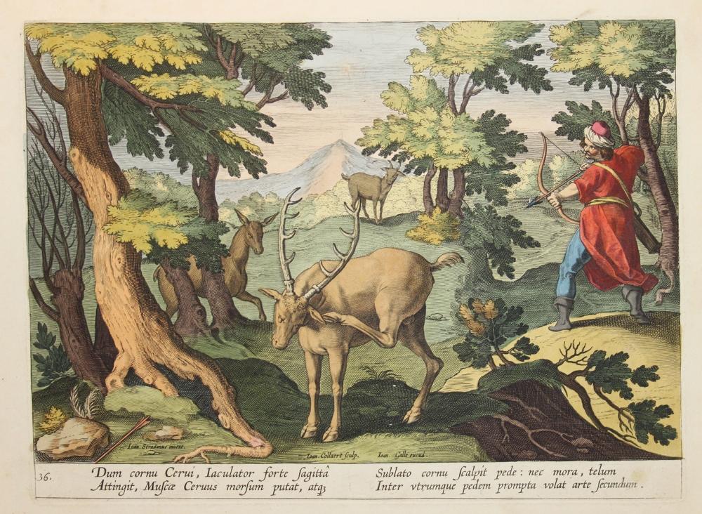 Caccia al cervo con l'arco (Jan van der Straet, Venationes ferarum, avium, piscium, pugnae bestiariorum et mutuae bestiarum [...], Anversa, Philippe Galle, 1602).